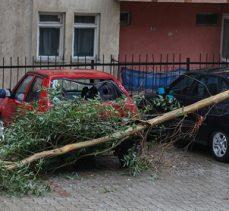 Fethiye'de fırtına ağaçları söktü